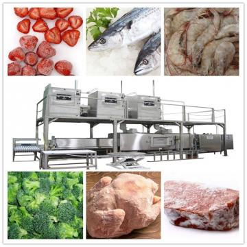 Factory Price High Quality Automatic Vegetable Fruit Food Washer Frozen Meat Thawing Washing Machine