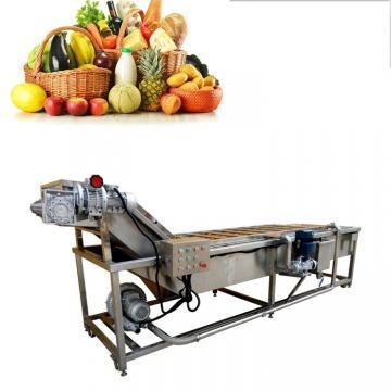 Easy Operation Stainless Steel Fresh Fruit Washer Machine/fresh Vegetables Washing Machine/food Washer