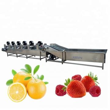 Food Machine Single-Cylinder Fruit and Vegetable Bubble Ozone Washing Machine Red Date Cleaning Machine