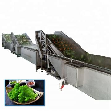 Commericial Vegetable and Fruit Food Washing Cleaning Machine