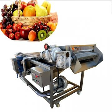 Industrial Automatic Fruit and Vegetable Food Washer Washing Cleaning Machine