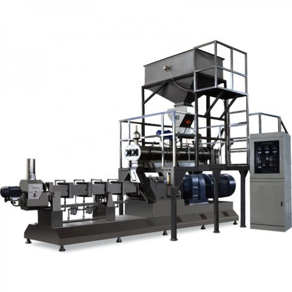 High Efficiency Factory Price China Double Screw Extruder Floating Fish Feed Animal Feed Pellet Production Line #1 image
