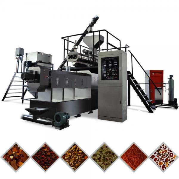 High Efficiency Factory Price China Double Screw Extruder Floating Fish Feed Animal Feed Pellet Production Line #2 image